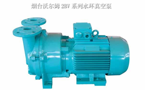 水环式真空泵【20年生产经验】_水环泵【真空泵厂家直销】
