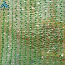 砂石料覆盖网 6针绿色防尘网图片