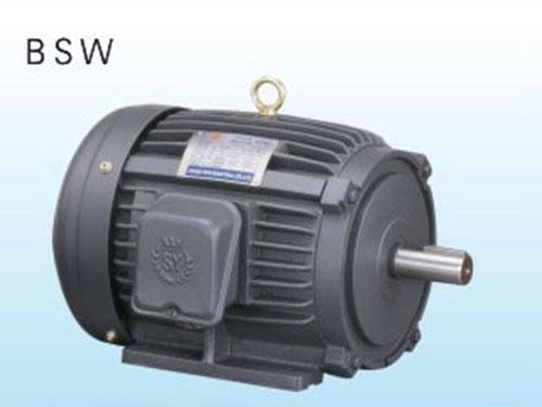 台湾群策电机一般标准型卧式马达 BSW油压专用铣壳卧式出轴电机