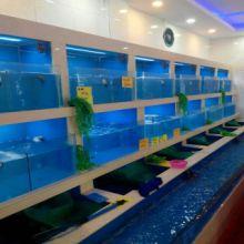 杭州实力商家供应玻璃鱼缸