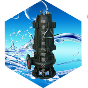 山东蓝升机械有限公司-济南QW污水泵-获得多项产品技术认证-济南排污水泵