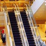 东莞二手电梯回收 全国二手电梯回收 二手电梯回收价格 二手电梯回收公司 二手电梯回收厂家