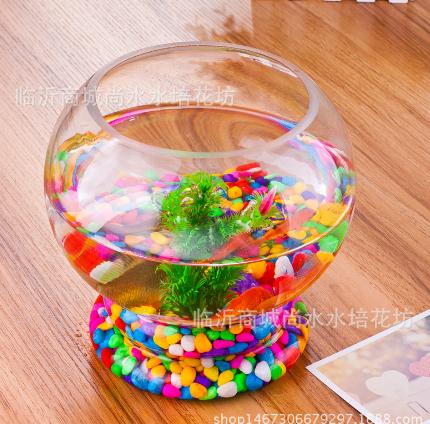 供应透明台式玻璃花瓶 绿萝花器  桌面摆件 带底水培加厚花瓶 花瓶哪家好 玻璃瓶