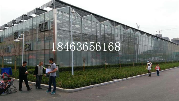 玻璃温室产地全选-新闻消息