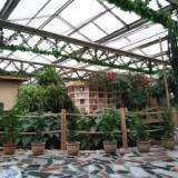 玻璃餐厅温室 玻璃休闲会所 建一个玻璃餐厅温室能用多少年 玻璃温室使用年限