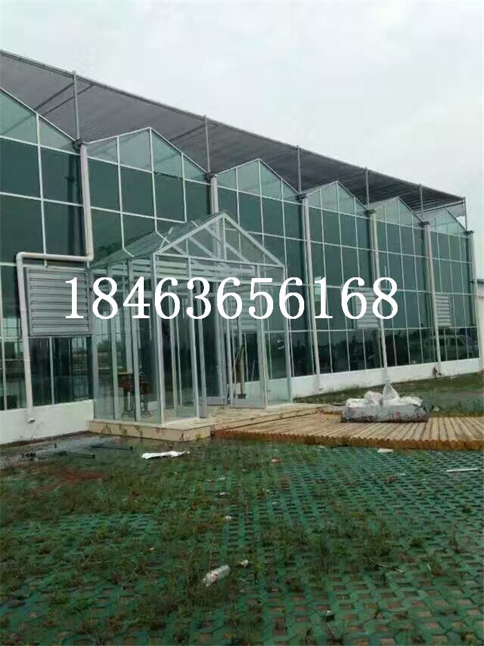 玻璃温室夏季降温 生态温室玻璃 玻璃温室大棚造价