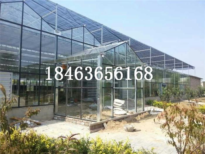 智能温室建设如何选择建设规模 连栋玻璃温室大棚