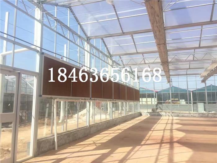 温室大棚建造的设计和施工中需要考虑的问题 玻璃大棚温室