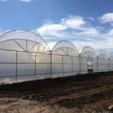 双拱双膜蔬菜温室 薄膜蔬菜适合建几层拱 潍坊建达温室公司