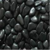 精品黑色鹅卵石 河北精品黑色鹅卵石厂家价格 精品黑色鹅卵石厂家批发