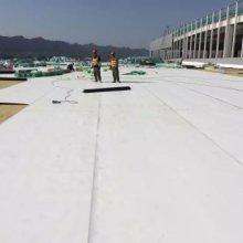 进口TPO柔性防水卷材 凡士通进口热塑性聚烯烃 柔性防水屋面专用tpo批发