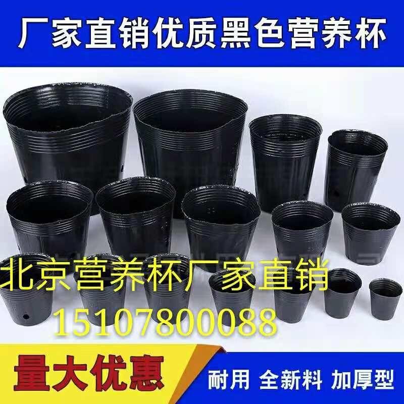 云南营养杯供应商 营养杯批发价格 营养杯规格