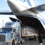 广州港到美国的国际货运 广州到洛杉矶的船务 中国到美国的海运代理 全球到中国的进口物流公司