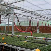 智能薄膜育苗温室 育苗温室适合用哪种材料的温室大棚