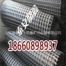 山西煤矿用顶网 钢塑复合假顶网,批发