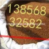 桔梗种子的繁殖方法  桔梗种子的繁殖方法,桔梗的价格 桔梗种子的繁殖方法,桔梗种苗价格