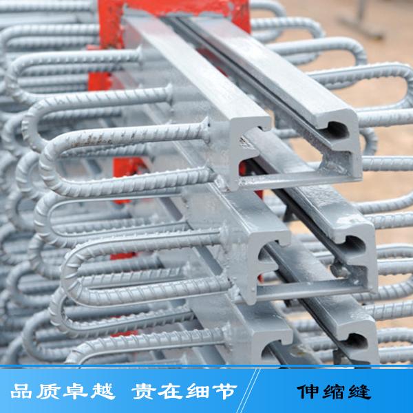 厂家直销加固桥梁养护伸缩缝 异型钢建筑梳齿专业伸缩缝欢迎订购