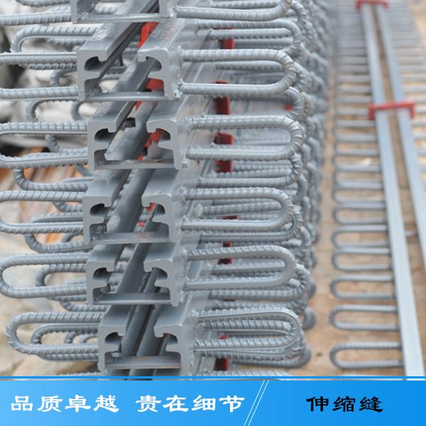 厂家直销加固桥梁养护伸缩缝 生产异型钢建筑梳齿伸缩缝专业有保障