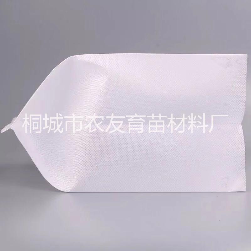 轻基质网袋容器育苗时的注意事项
