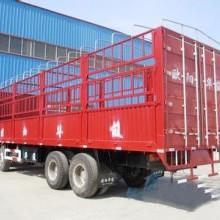龙岩到西藏拉萨货物运输  龙岩到西藏拉萨仓储配送  龙岩到西藏拉萨零担运输