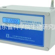 尾气分析仪FGA-3A 发酵专用批发