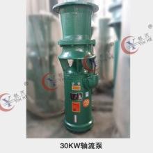 QSH混流泵 大流量潜水泵 农田灌溉防汛排水轴流泵