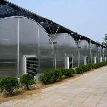 宁夏草莓温室大棚_鑫百汇种植温室