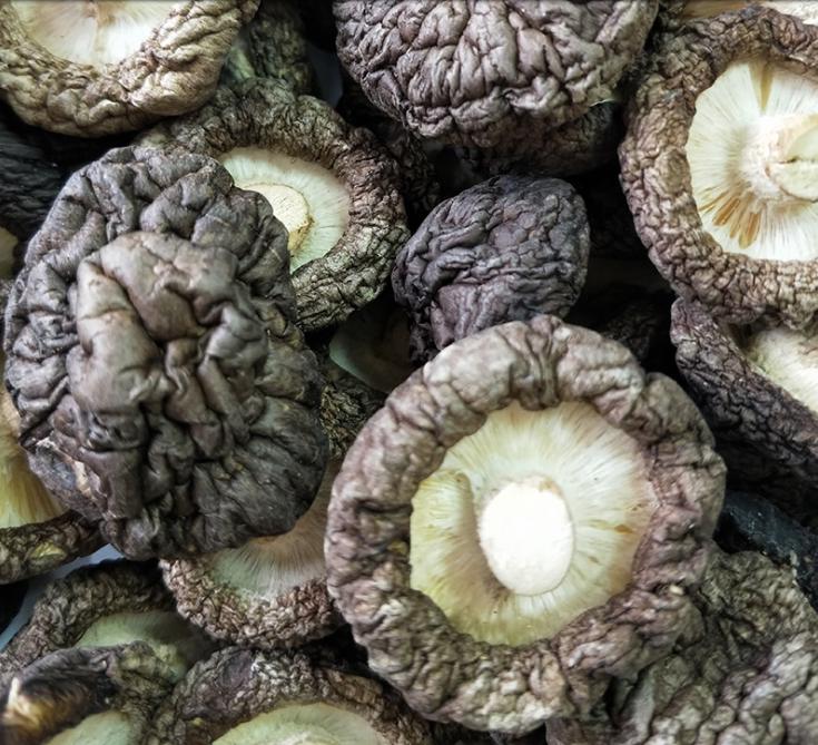 香菇干厂家直销-供应商