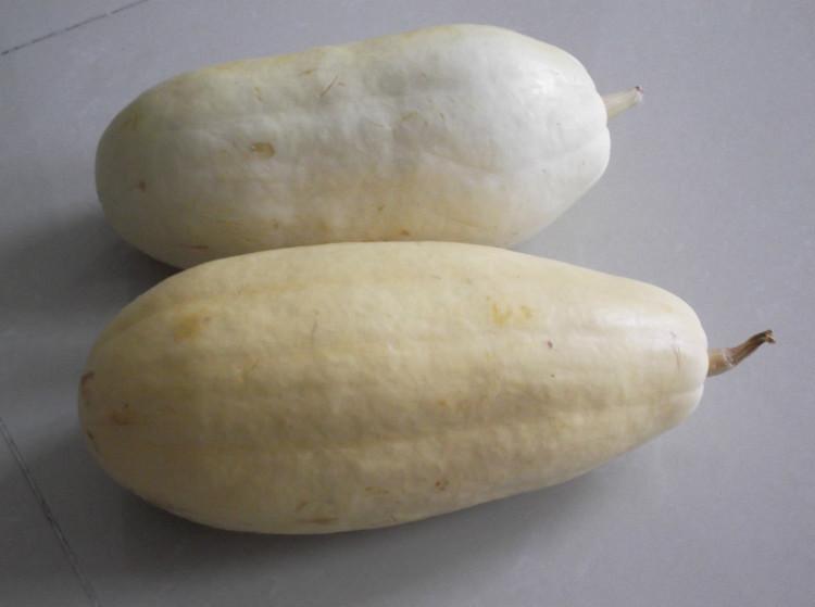 杏瓜 杏瓜种子农业发展直供杏瓜种杏瓜种植技术栽培