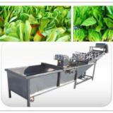 冠通机械蔬菜清洗流水线 净菜加工设备厂家直供
