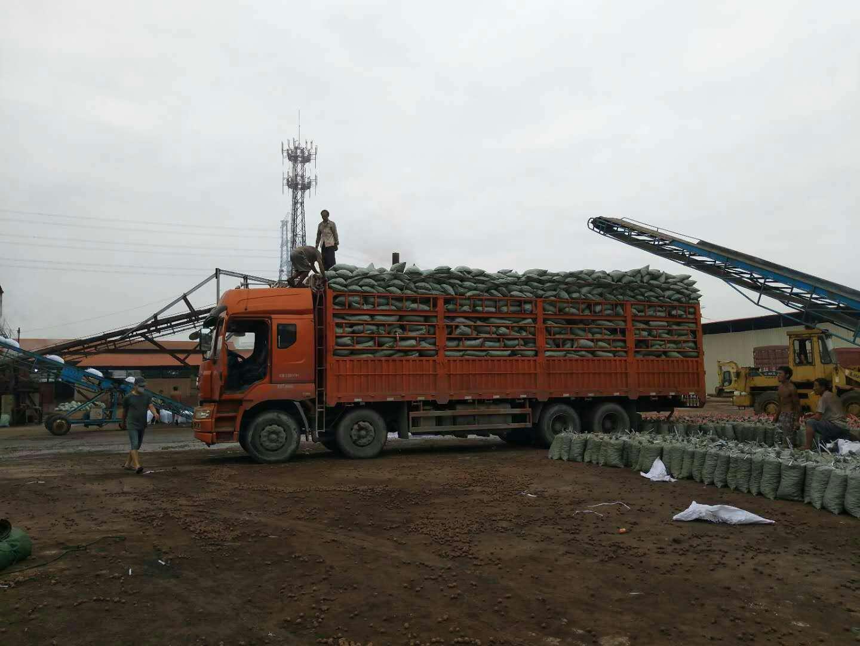 广州开发商专用卫生间回填陶粒防水
