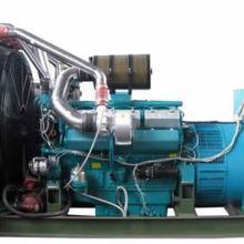 销售出租  600KW上海帕欧发电机组-热门供应上海帕欧柴油发电机价格 600KW