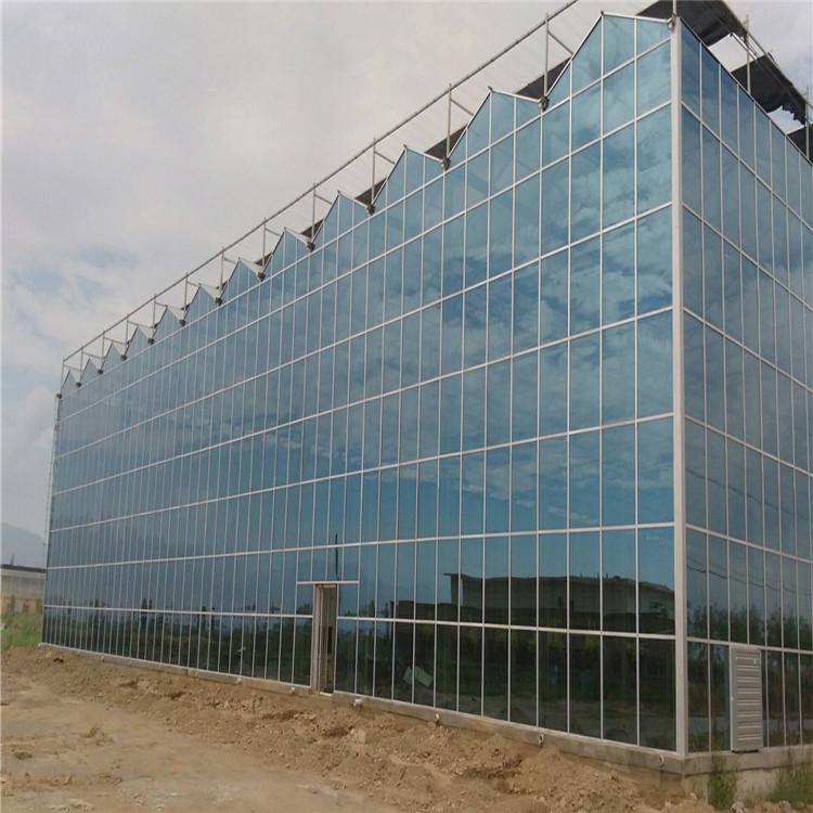 江西玻璃温室厂家行业的发展现状