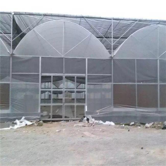 宁夏连栋温室使用年限产品