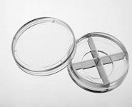 四分格激光共聚焦培养皿图片