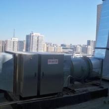 除臭处理整套设备 活性炭 活性炭废气净化除臭工程 工程团队图片