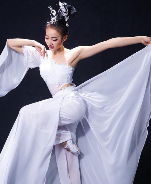 新款现代舞蹈服装 水袖古典舞蹈服装 演出服 女飘逸伞舞服装 仙女伴舞服装 凉凉舞蹈服装