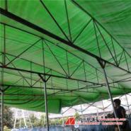 仓库活动帐篷图片
