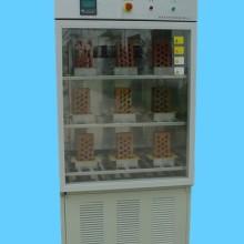 ZFX-30X砖瓦泛霜试验箱 苏州东华泛霜试验箱批发