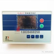 南京仁泰锅炉控制器 南京仁泰智能数字锅炉YLZK-E1/EP1366