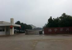 安徽泾县扬子泵阀有限公司简介