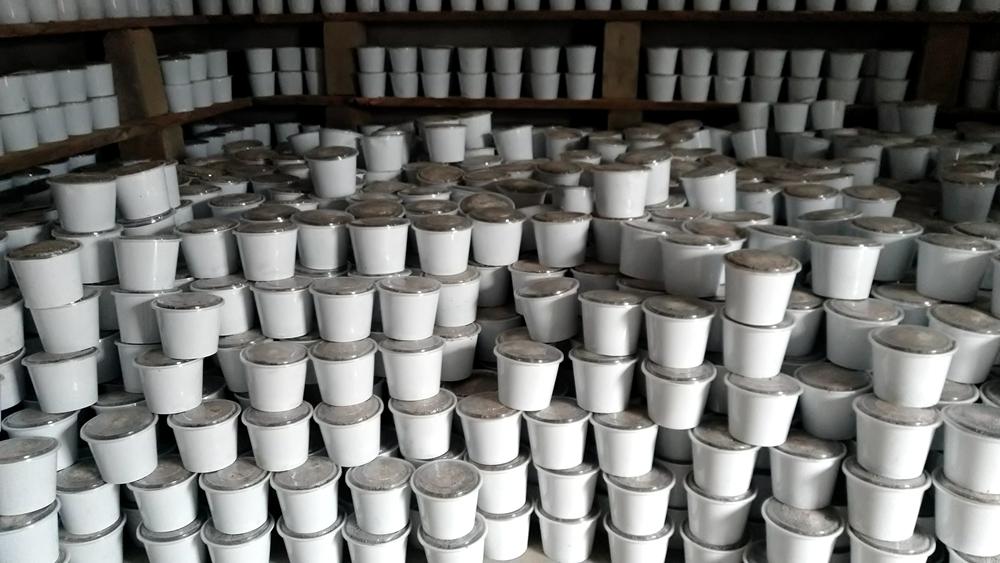 蘑菇盆景蘑菇厂家直销可贴牌代加工