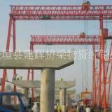 桥梁专业门式起重机