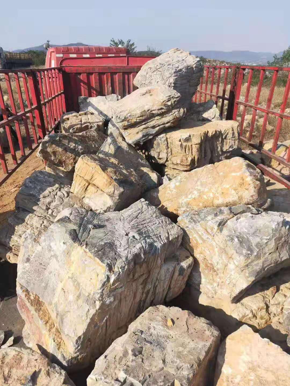安徽龟纹石批发价、价格、供应商报价