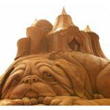 动物沙雕1匠之心沙雕有限公司专业专注