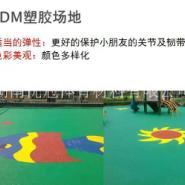 自贡EPDM彩色颗粒图片