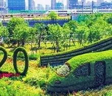 造型绿雕同行加工陕西悦海同鑫建设工程有限公司定制加工