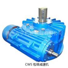 CWS蜗轮蜗杆减速机 CWS125蜗杆减速机 山东力宇机械专业生产批发