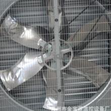 廠家供應畜牧風機 養雞風機 雞舍專用降溫風機 負壓風機 來貨定制批發