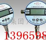 LC22系小口径椭圆齿轮流量计  LC22小口径椭圆齿轮流量计